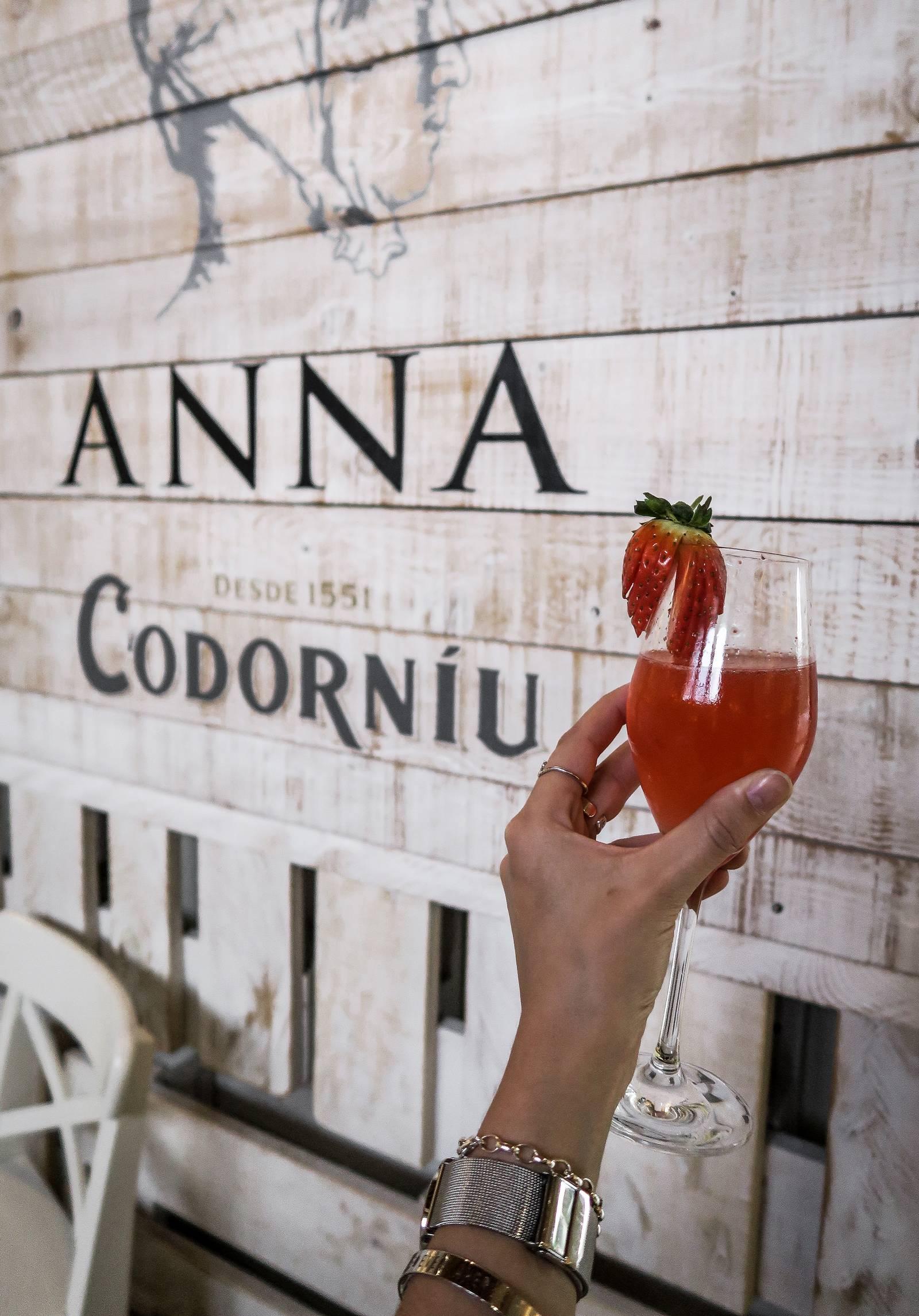 ANNA DE CODORNIU WINERY 10