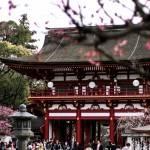 A la découverte de la région de Kyushu (Japon)