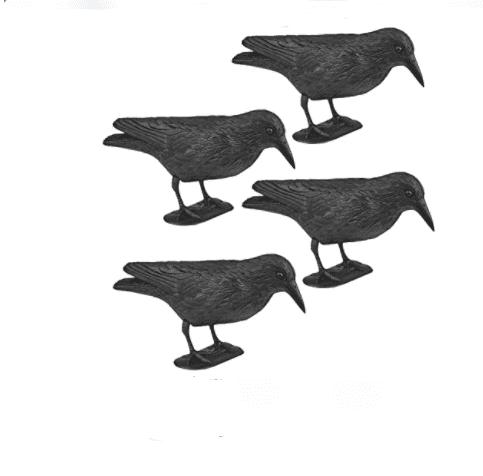 WELLGRO Lot de 4 répulsifs pour oiseaux – corbeaux assis en plastique noir Amazon